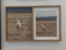 Wilma Hurskainen: double frame